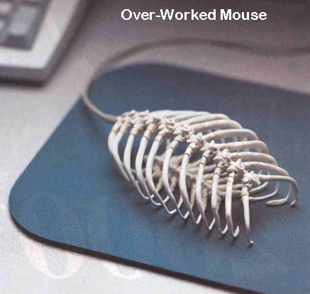 images/stories/Computer-Funny/OverWorkedmouse.jpg